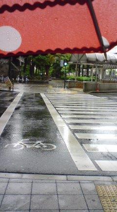 雨ざんす(´Д`)